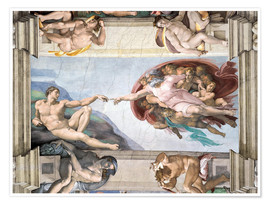 Premium poster  Sistine Chapel: The Creation of Adam - Michelangelo