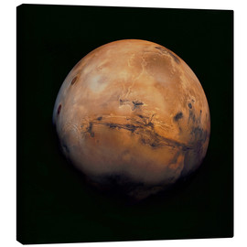 Canvas print  Mars - Stocktrek Images