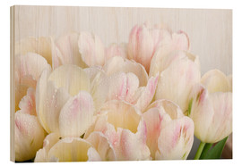 Wood print  Pastel-colored tulips 06 - Nailia Schwarz