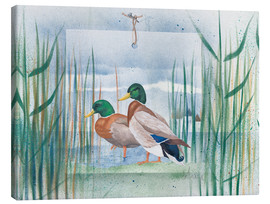 Canvas print  Pair of wild ducks - Franz Heigl