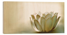 Wood print  White lotus - Christine Ganz