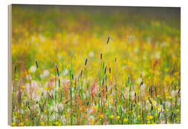 Wood print  Spring Meadow - Suzka