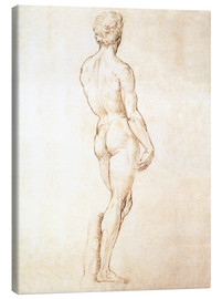 Canvas print  Study of David - Michelangelo