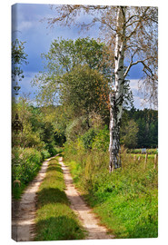 Canvas  Forest path with Birch - CAPTAIN SILVA