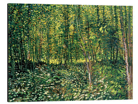 Alu-Dibond  Trees and Undergrowth - Vincent van Gogh