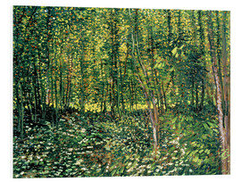 Foam board print  Trees and Undergrowth - Vincent van Gogh