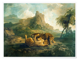 Poster Leopards at Play