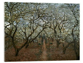 Acrylic print  Blossoming Orchard - Claude Monet