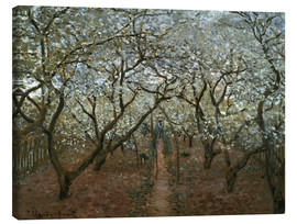 Canvas  Blossoming Orchard - Claude Monet
