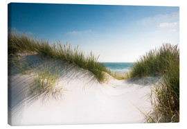 Canvas print  Dune with shiny marram grass - Reiner Würz