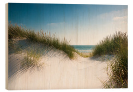 Wood print  Dune with shiny marram grass - Reiner Würz
