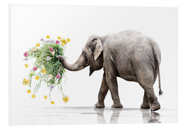 Foam board print  Elephant with Flower - Werner Dreblow