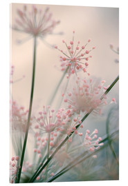 Acrylic print  Mellow - Evelyn Meyer
