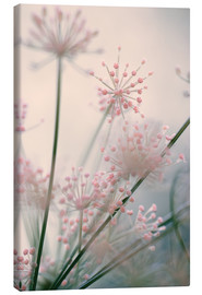 Canvas print  Mellow - Evelyn Meyer