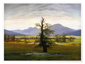 Premium poster  The lonesome tree - Caspar David Friedrich
