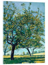 Acrylic print  Paddock with apple trees - Ferdinand Hodler
