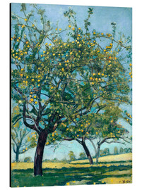 Aluminium print  Paddock with apple trees - Ferdinand Hodler