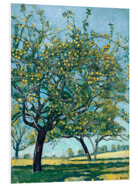 Foam board print  Paddock with apple trees - Ferdinand Hodler