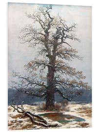 Foam board print  Oak Tree in Snow - Caspar David Friedrich