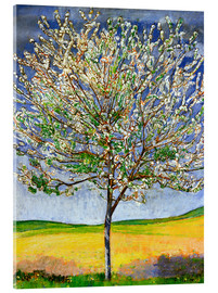 Acrylic glass  Blossoming cherry tree - Ferdinand Hodler
