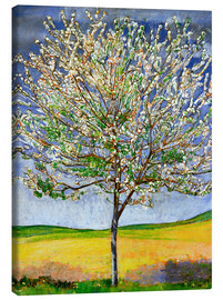 Canvas print  Blossoming cherry tree - Ferdinand Hodler