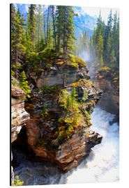 Aluminium print  Pure wilderness at Maligne Canyon in Jasper National Park, Canada - John Morris