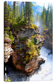 Canvas  Pure wilderness at Maligne Canyon in Jasper National Park, Canada - John Morris