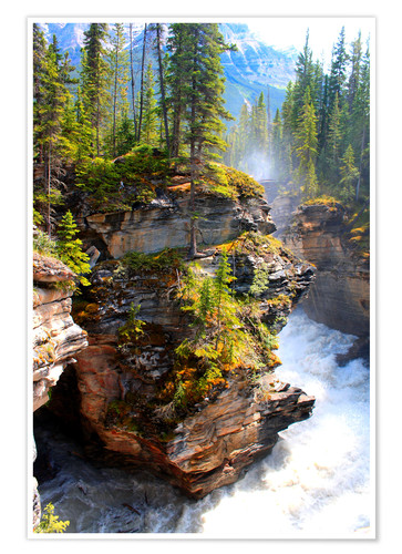 Premium poster Pure wilderness at Maligne Canyon in Jasper National Park, Canada