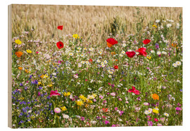 Wood print  Summer meadow - Suzka