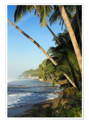 Premium poster Palm Fringed Tropical Paradise Coastline