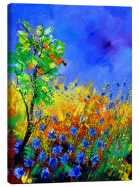 Canvas print  Cornflowers - Pol Ledent