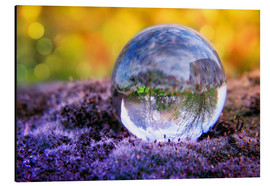 Aluminium print  In the bed of moss - INA FineArt