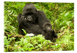 Acrylic glass  Eastern Gorilla with baby between leaves - Joe & Mary Ann McDonald