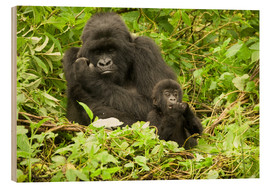 Wood print  Gorilla with baby in the green - Joe & Mary Ann McDonald
