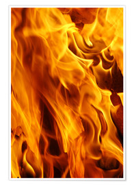 Premium poster Flaming fire