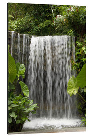 Alu-Dibond  Waterfall in the Botanical Garden Orchid Garden in Singapore - Cindy Miller Hopkins