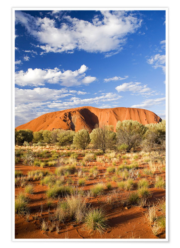 Premium poster Uluru in the outback