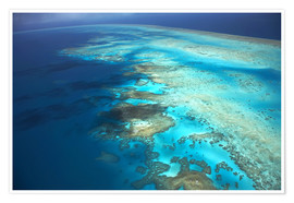 Poster  Great Barrier Reef Marine Park - David Wall