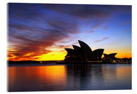Acrylic print  Sydney Opera House in the evening light - David Wall
