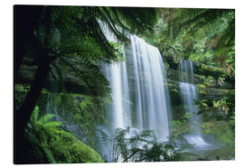 Aluminium print  Russell Falls and tree ferns - Kevin Schafer