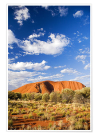 Premium poster Ayers Rock in the Outback