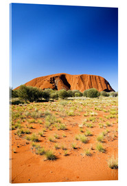 Acrylic print  Ayers Rock - David Wall