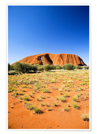 Premium poster  Ayers Rock - David Wall