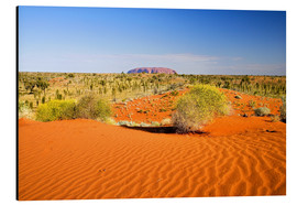 Aluminium print  Outback and Uluru on the horizon - David Wall