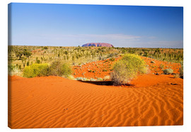 Canvas print  Outback and Uluru on the horizon - David Wall
