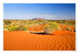 Premium poster  Outback and Uluru on the horizon - David Wall