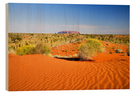 Wood  Uluru in the distance overlooking the Outback - David Wall