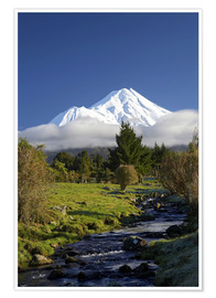 Premium poster  A stream and green meadows at Mount Taranaki - David Wall