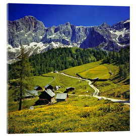 Acrylic print  A pasture in the Dachstein Alps - Ric Ergenbright