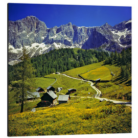 Aluminium print  A pasture in the Dachstein Alps - Ric Ergenbright